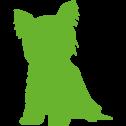 yorkshire-ulm-favicon_green_right